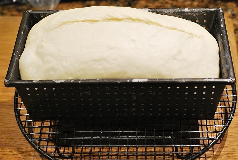Wyrośnięte ciasto chlebowe