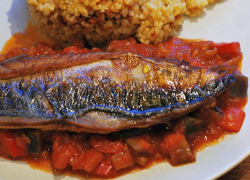 Red Ratatouille and mackerel